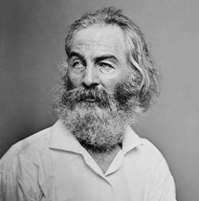 126_Whitman_New_1